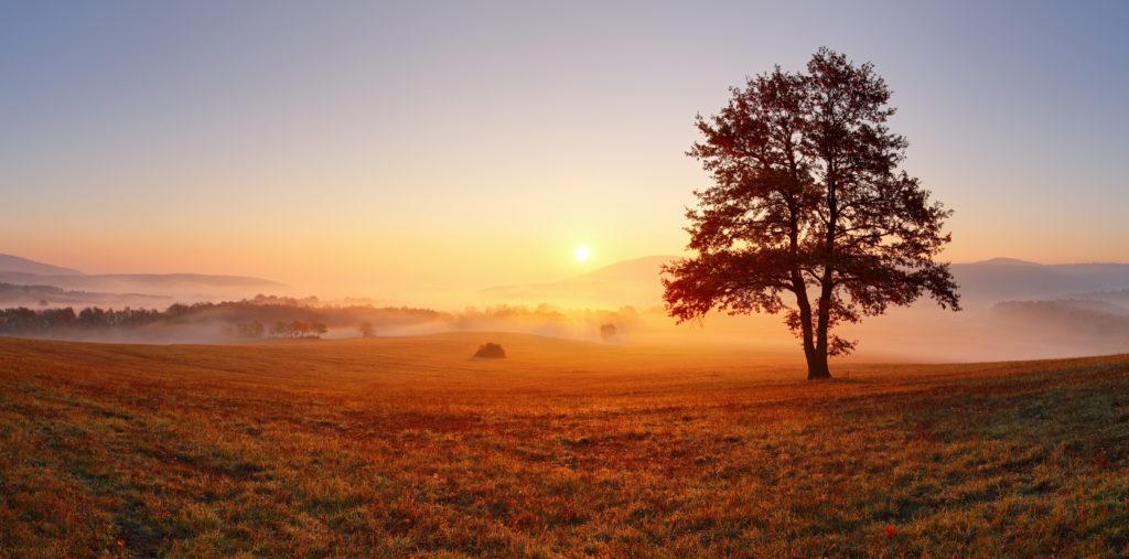 Abschied vom Tag im Herbst